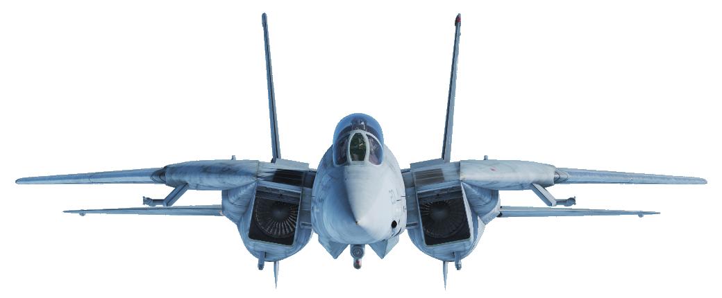 F-14 Tomcat, Bild von kaltokri, Gemeinfrei